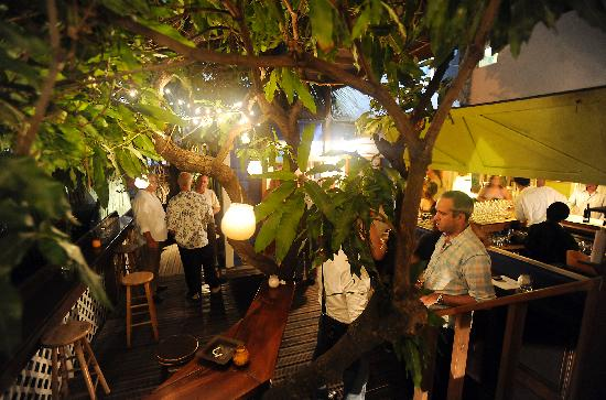 Dove Restaurant & Bar 1864: under the mango tree