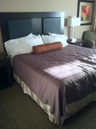 Monarch Hotel and Conference Center: modern bright clean rooms