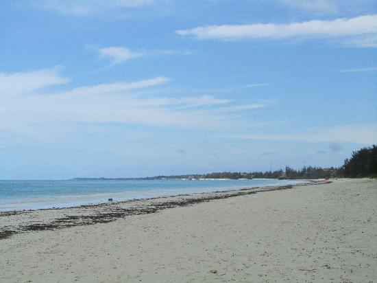 New Teddy's Place: The beach is very close, just a short walk down a path.  As you can see, not crowded!!