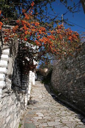 Portaria, Hellas: Enviroment