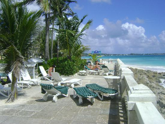 Dover Beach Hotel: The terrace looking east