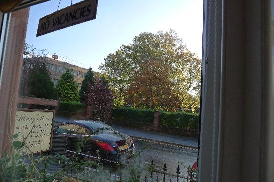 Albany House: View from breakfast table