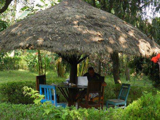 Nature Safari Resort & Lodge