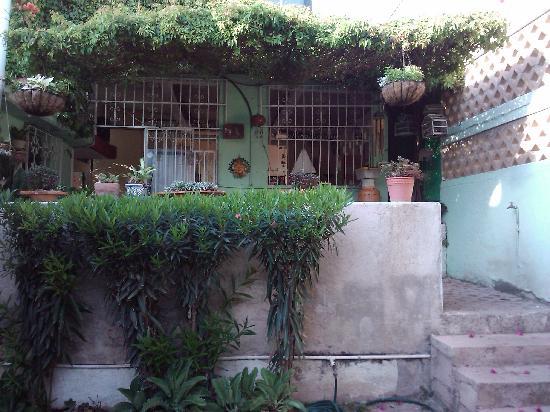 Las Palmas Hostel : Patio