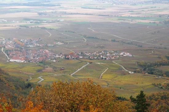 Regioscope Tours: Looking down into the village of Saint-Hippolyte
