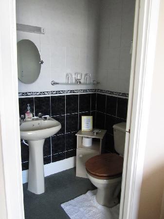 Hatfield House: Room 1 toilet