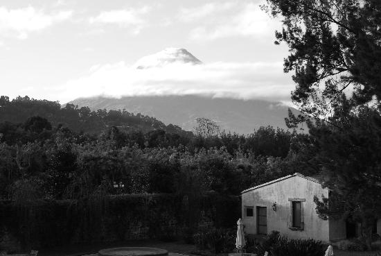 Finca Filadelfia Coffee Resort & Tours: View From Our Terrace