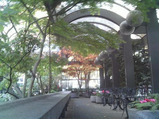 Usa Washington Seattle Waterfall Garden Park