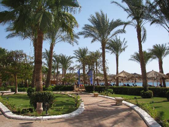Iberotel Palace: Zicht richting strand