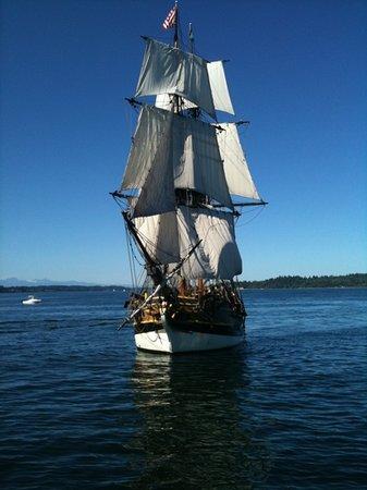 The Lady Washington: tall ship adventure sail