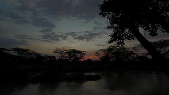 Mara Eden Safari Camp: river view in the evening