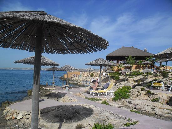 Ramla Bay Resort: terrasses très agréables et bien aménagées en bord de mer