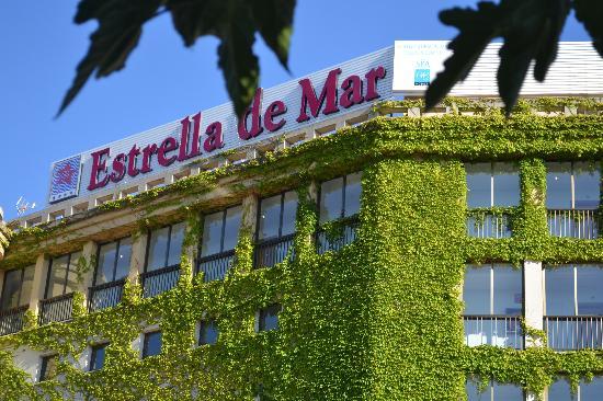 Estrella Coral de Mar Resort Wellness & Spa : Välkomnande entré