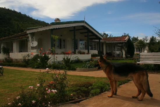Red Hill Nature Resort: The front cottage