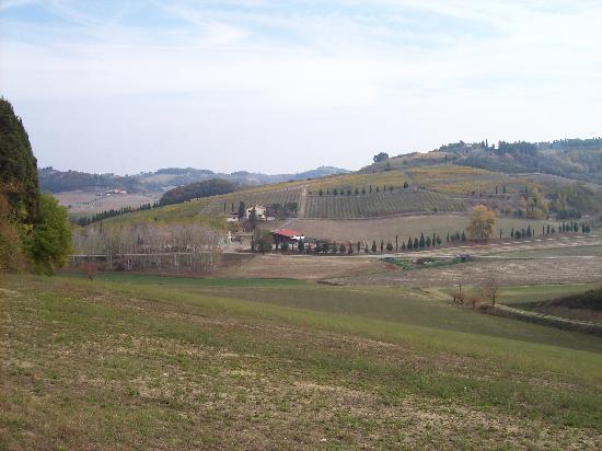Azienda Agricola ed Agrituristica Cafaggio: Tuscan countryside surrounding Agrituristica Cafaggio