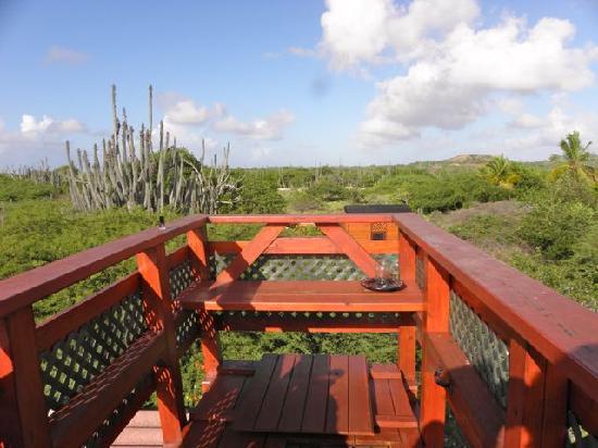 Auriga Ecolodge: heerlijk dakterras, genieten van uitzicht of sterren kijken