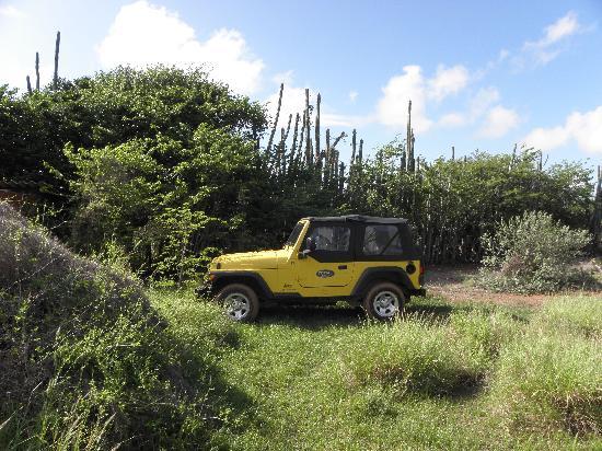 Auriga Ecolodge: Jeep wel noodzakelijk, leuke ritjes maken