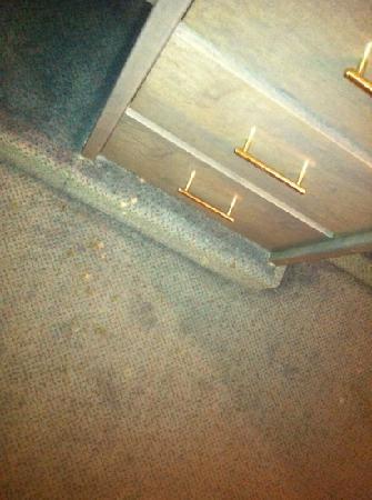 Europa Hotel Ludwigshafen: Fleckiger Teppich überall