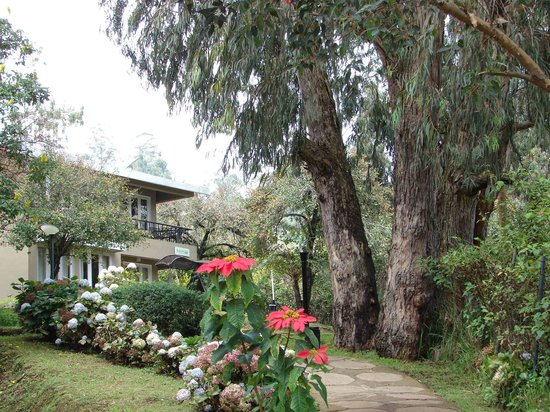 Kodai - By The Lake, A Sterling Holidays Resort: rooms view