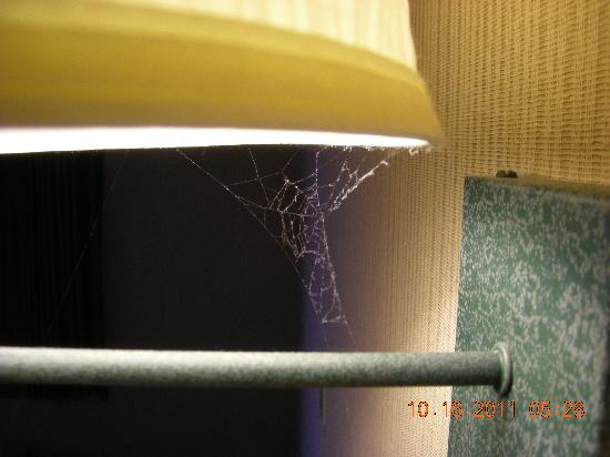 Howard Johnson Closest to the Falls and Casino : Spiderweb in lamp