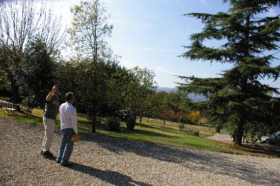 POGGIO SALVI Agriturismo: View from Patio