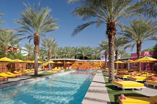 The Saguaro Scottsdale - Picante Pool