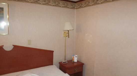 Americas Best Value Inn & Suites - Warren / Detroit: Not a nice room..all of them look like this