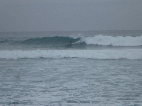 "Surf 2 Live Surf Retreat : Surfer at ""Wilderness"". Whether you're a novice or a veteran surfer, Elliot will show you the be"