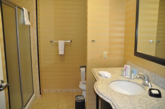 Hampton Inn & Suites Fort Worth Fossil Creek : Badezimmer