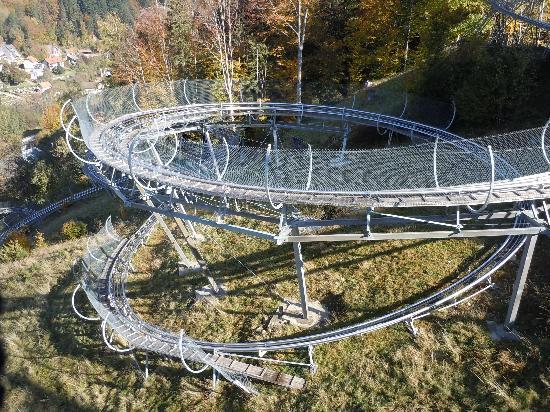 Hasenhorn Coaster Todtnau: The rodelbahn track