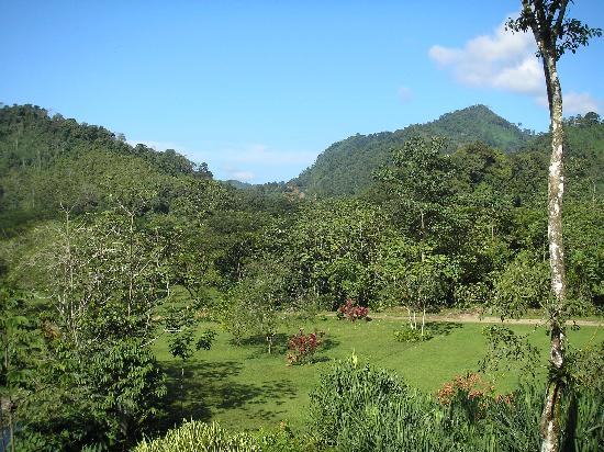 Province of Puntarenas, คอสตาริกา: View from lodge