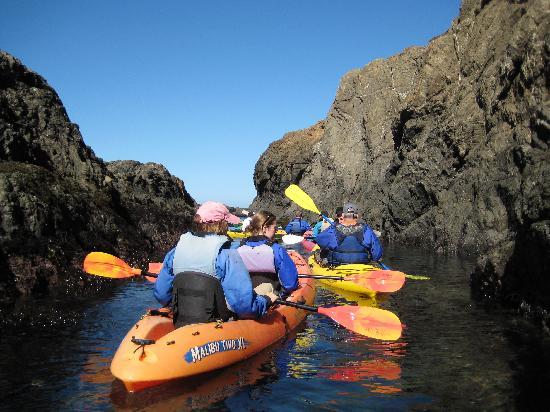 Kayak Mendocino: Kayaking with the group
