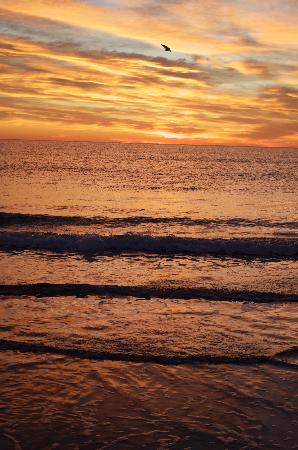 Atlantic Oceanfront Motel: Wells Beach