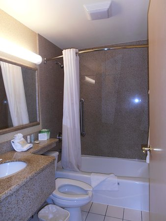 Comfort Inn JFK Airport: Bathroom-shower has good pressure and lots of hot water