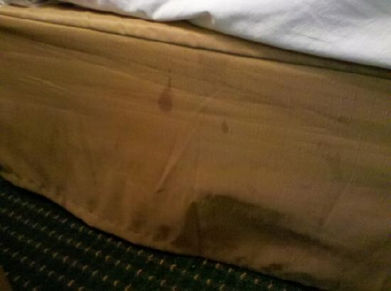 Quality Inn & Suites: Unknown stains on the bed skirt, these were on both sides of the bed and in multiple places.
