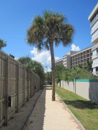 Hampton Inn Cocoa Beach/Cape Canaveral: The path to the beach