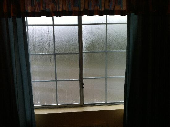 Pacific Inn Resort and Conference Centre: Condensation on Windows