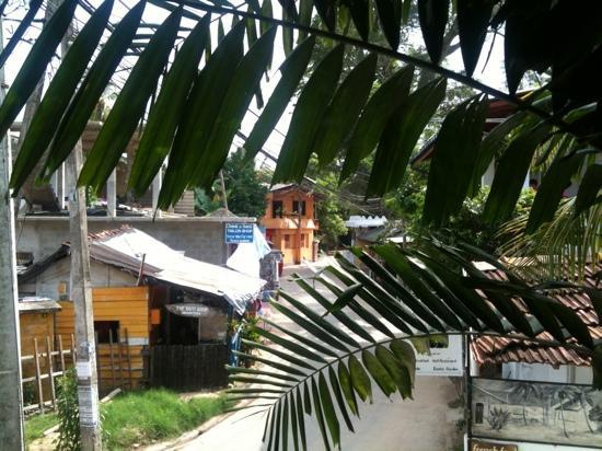 South Ceylon Vegetarian Restaurant: view from veranda looking down on village life