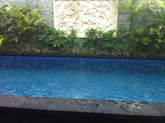 Legian Guest House: the swimming pool