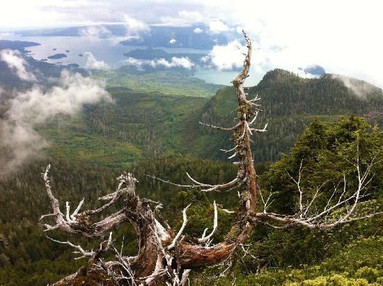 Sleeping Beauty Trail : View