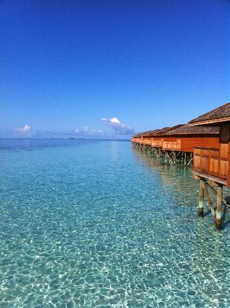 Vilamendhoo Island Resort & Spa: Vue de la terrasse de notre villa