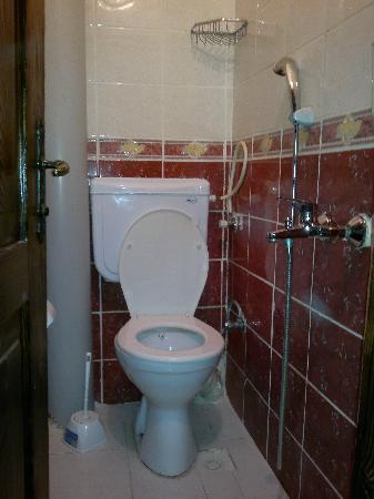 Sultanahmet Hotel: shower-toilet cabin
