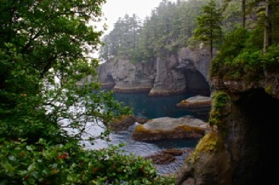 Neah Bay Wa Picture Of Makah Indian Reservation Forks