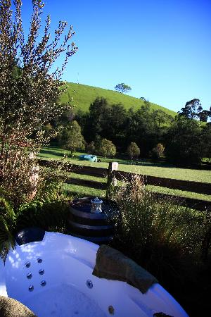 Tin Dragon Trail Cottages: our outdoor spa