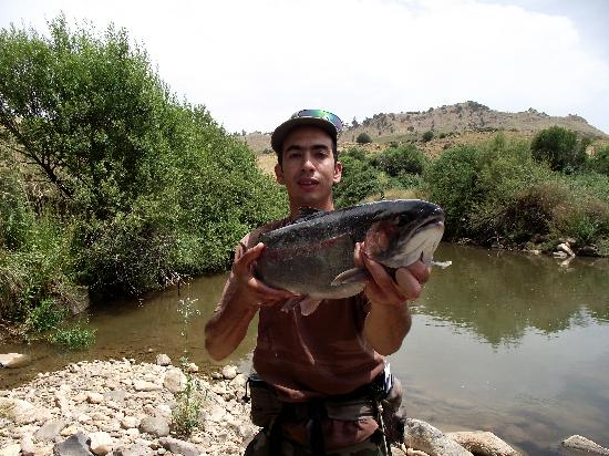 Morocco Unexplored - Private Day Tours: Rainbow trout 62CM caught above Azrou