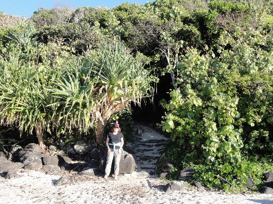 Hillhaven Holiday Apartments: Secluded beach