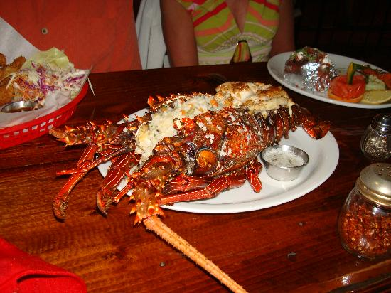 La Chatita Restaurant & Bar: Lobster