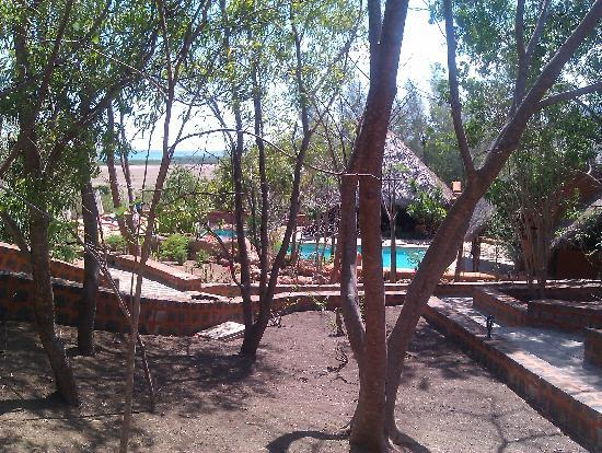 Suarez Hotel: Garden