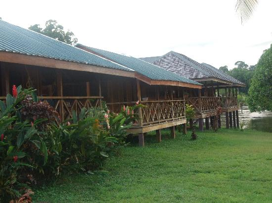 Iwokrama River Lodge: cabins