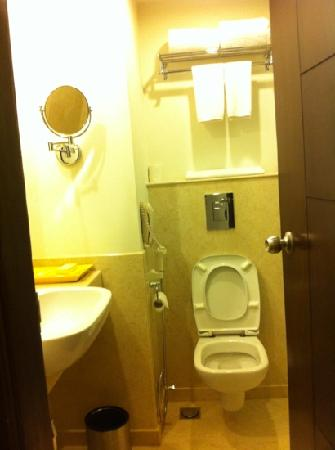 "Lemon Tree Premier, Leisure Valley, Gurgaon: toilet. quite small for a ""4 star"" and it floods when you take a shower"